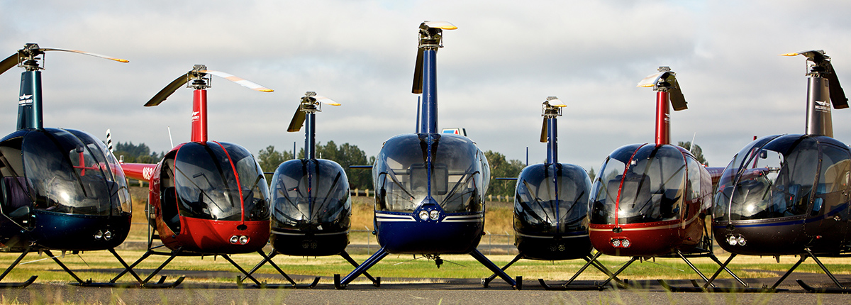 helicopter fleet, aircraft fleet